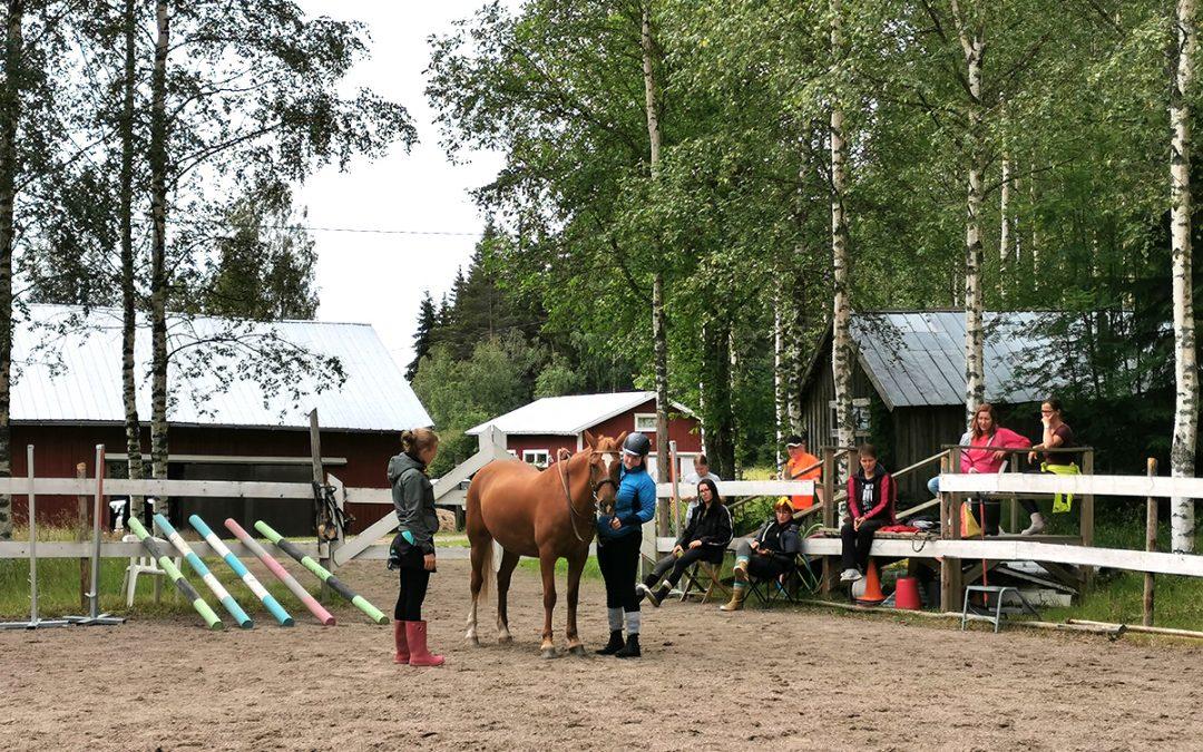 Hevosen hyvinvointi keskiössä (Juttu vain tilaajille)