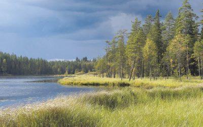 Luontoa ei ole suljettu – Etsi virkistystä lähiluonnosta